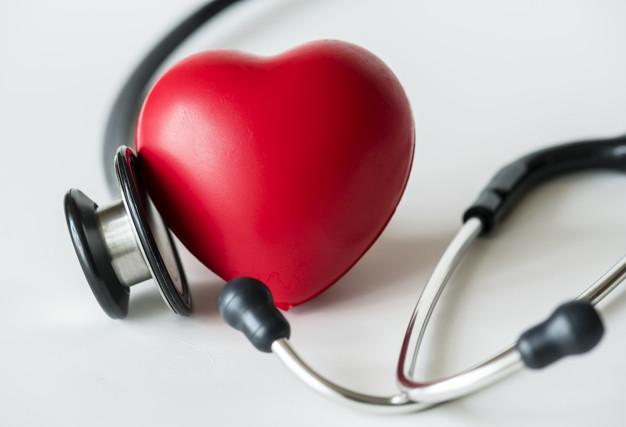 échographie cardiaque